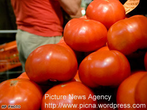 FDA lifts warning on tomatoes